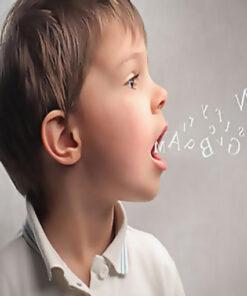 Dil ve Konuşma Terapisi Kapsamlı Sertifikalı Eğitim Programı