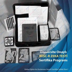 WISC-R-ZEKA-TESTİ